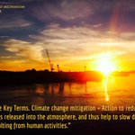 Image for the Tweet beginning: What is climate change mitigation?