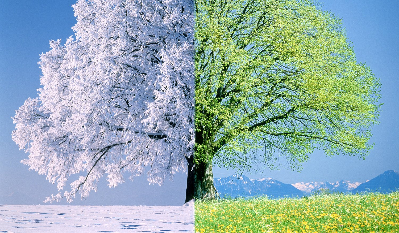 радиальные подшипники картинки зима и весна встретились представился опытным
