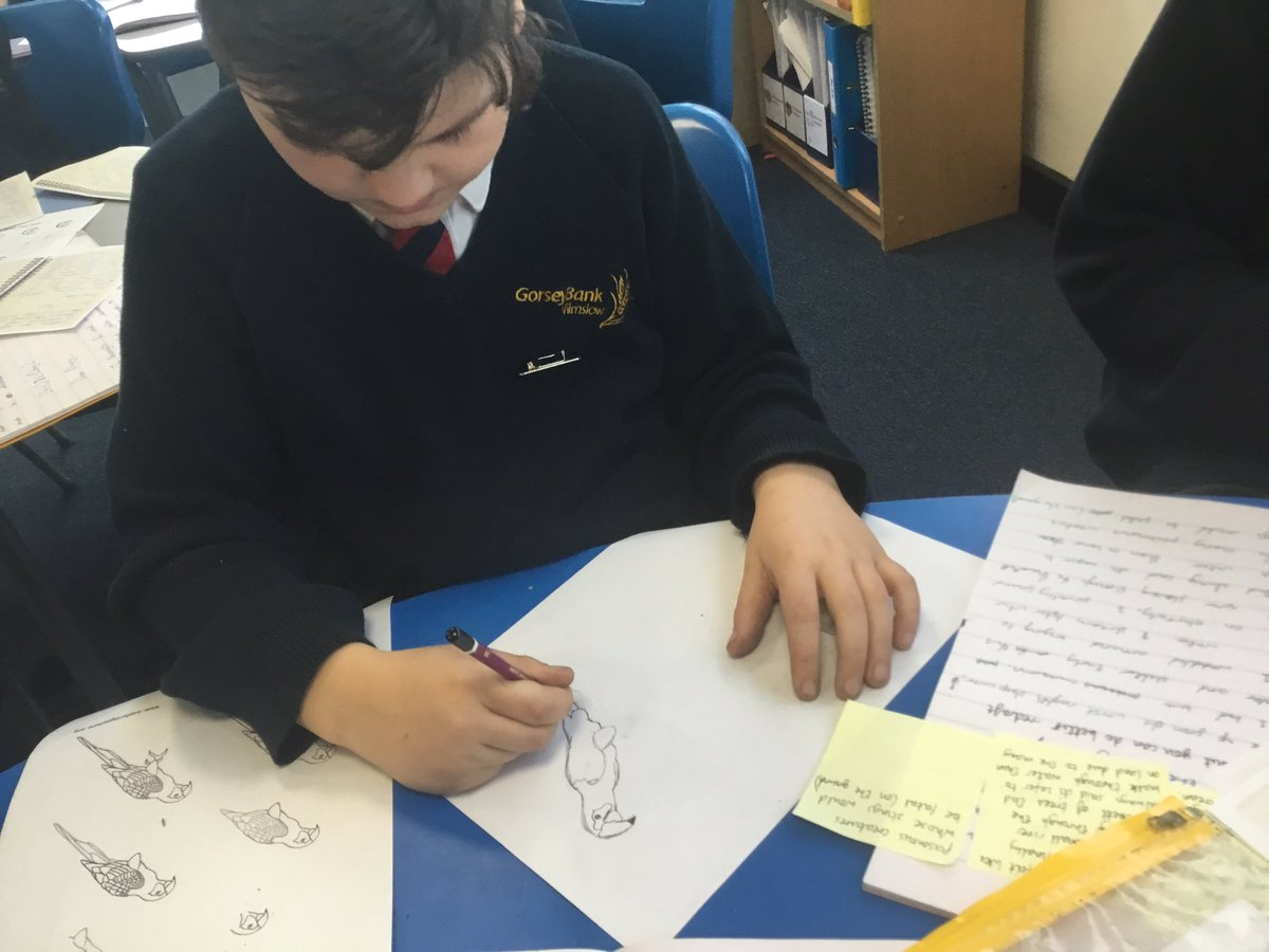 test Twitter Media - Some lovely sketching of animals we've come across in our rainforest diary entries! #gorseyenglish #gorseyart https://t.co/Nl1NkwISeD