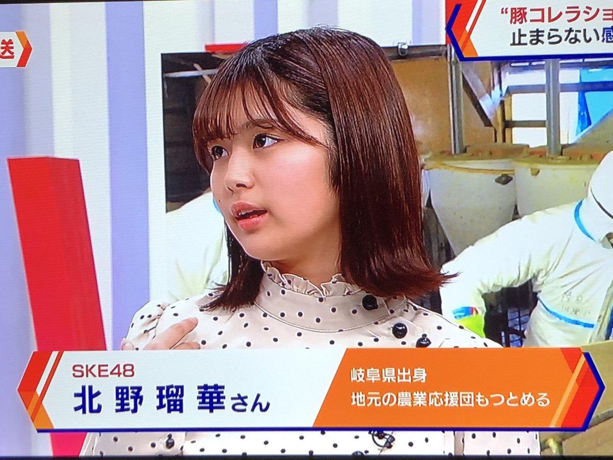 るかちゃん、ナビゲーション(NHK)に出演中 #北野瑠華