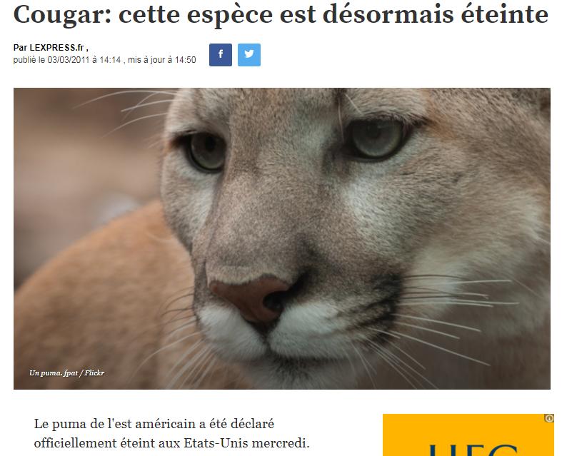 8b8a92959470b ... nouveau    https   www.lexpress.fr actualite societe environnement cougar-cette-espece-est-desormais-eteinte 968401.html  …pic.twitter.com JmHrrhjZ6A