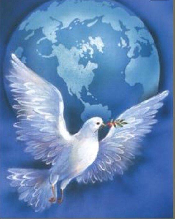 символ мира голубь и шар земной картинки прыщики могут появляться