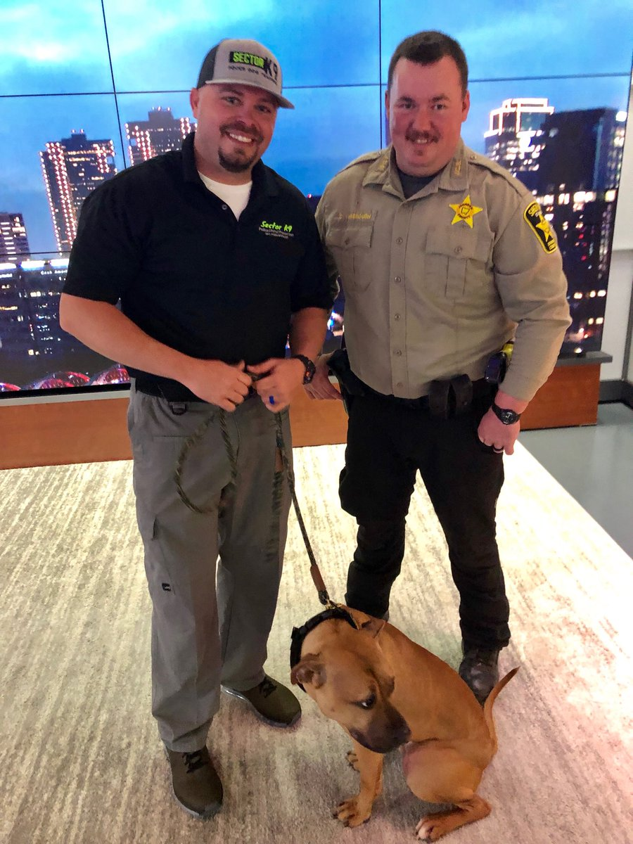 """Good boy 🐕!! It's graduation day for Maverick! Two months ago, he was a shelter dog, waiting for a home. Today he's a police dog trained to """"bust bad guys"""" says the deputy. Thank you @SectorK9 for stopping by @NBCDFW"""