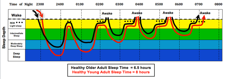 Do we really need eight hours of uninterrupted sleep a night? https://wef.ch/2O9naVJ #health