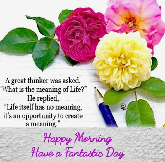 #GOOD MORNING FRIENDS  #NewDAY   ,,,  ITS #SATURDAY  ,  #HAPPY  FRESH DAY TO ALL LOVELIES AND BEAUTIFUL SOULS 🌹🌹🌹  🌹#NEW FOLLOWERS 🌹🌹🌹,,,,,,,,,,,,,,, THANKS AND WISHING YOU A GREAT DAY AHEAD #STAY HAPPY AND BLESSED