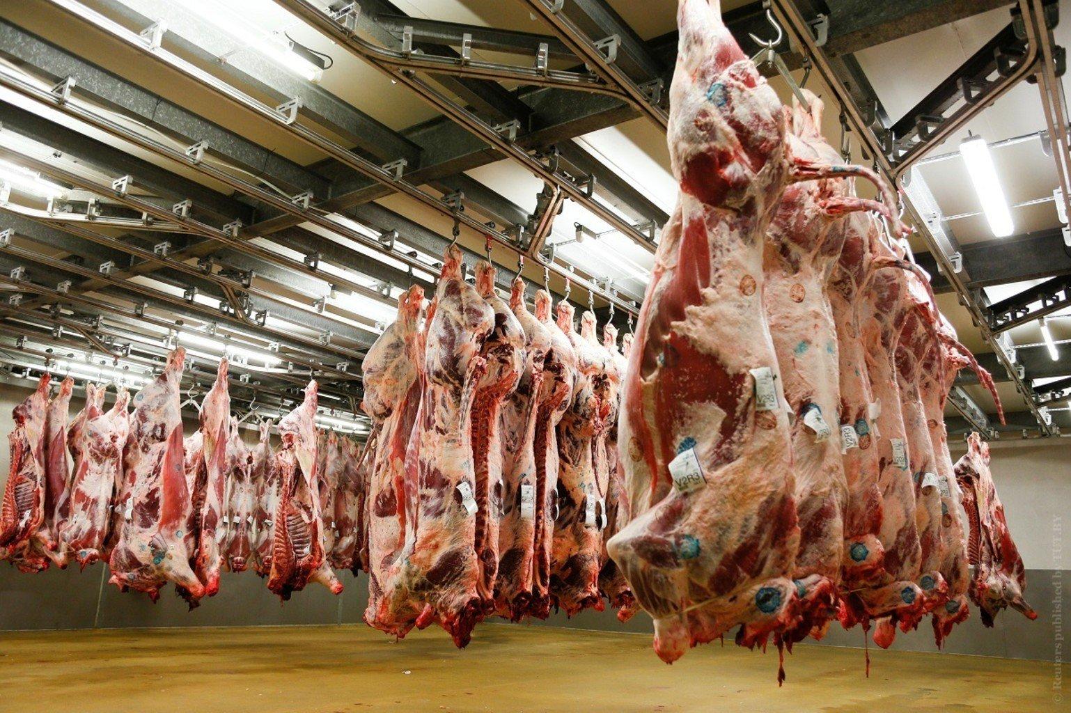 фрагмент изготовление мяса в картинках плечи спадают