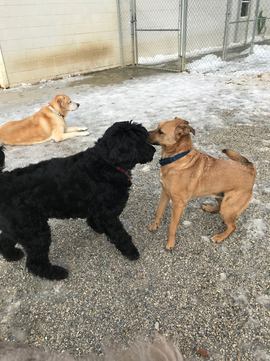 Molly takes a break while Louis and Dega share a secret