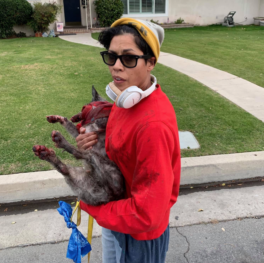 #BREAKING Charges have been filed by the District Attorney's Office against Elaine Rosa, who was accused of dragging a dog behind a scooter. https://buff.ly/2EdZfyE