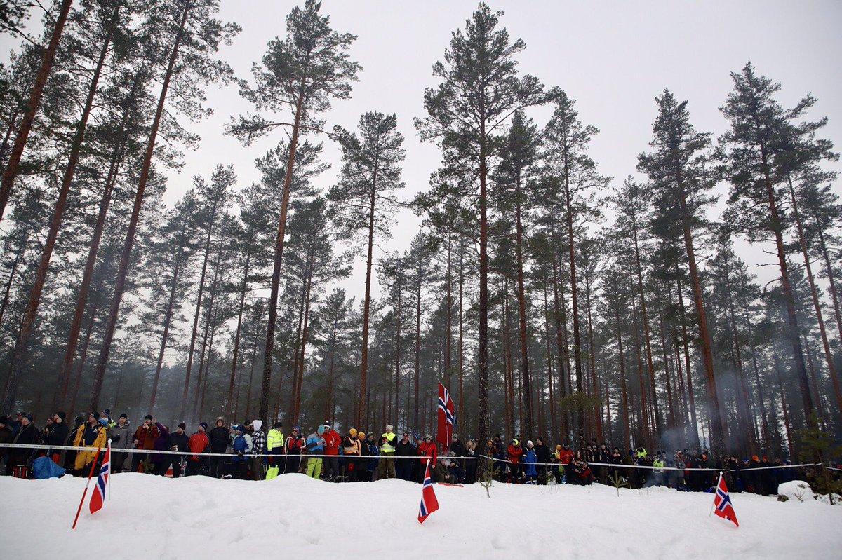 WRC: 67º Rallye Sweden [14-17 Febrero] - Página 6 DzfSfntVAAAg34m