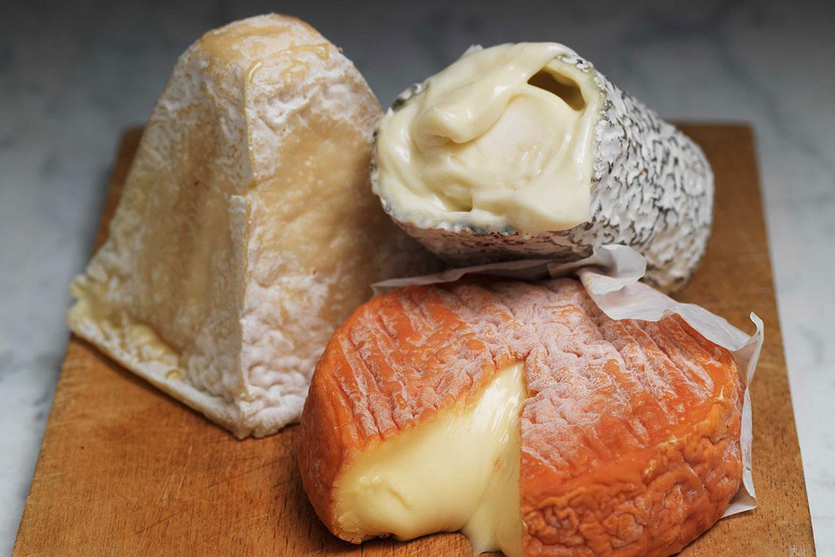 The truth about cheese: The terrible costs of our favourite food https://t.co/7belhy8QHq
