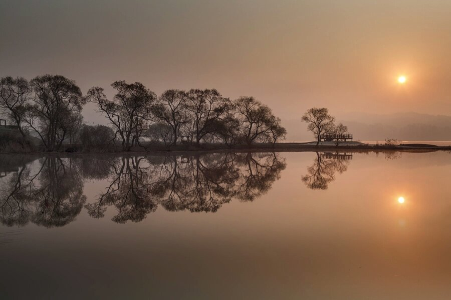 The reflect by c1113