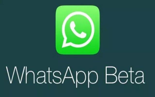 WhatsApp Business إطلاق إصدار تجريبي من التطبيق  لأجهزة iPhones