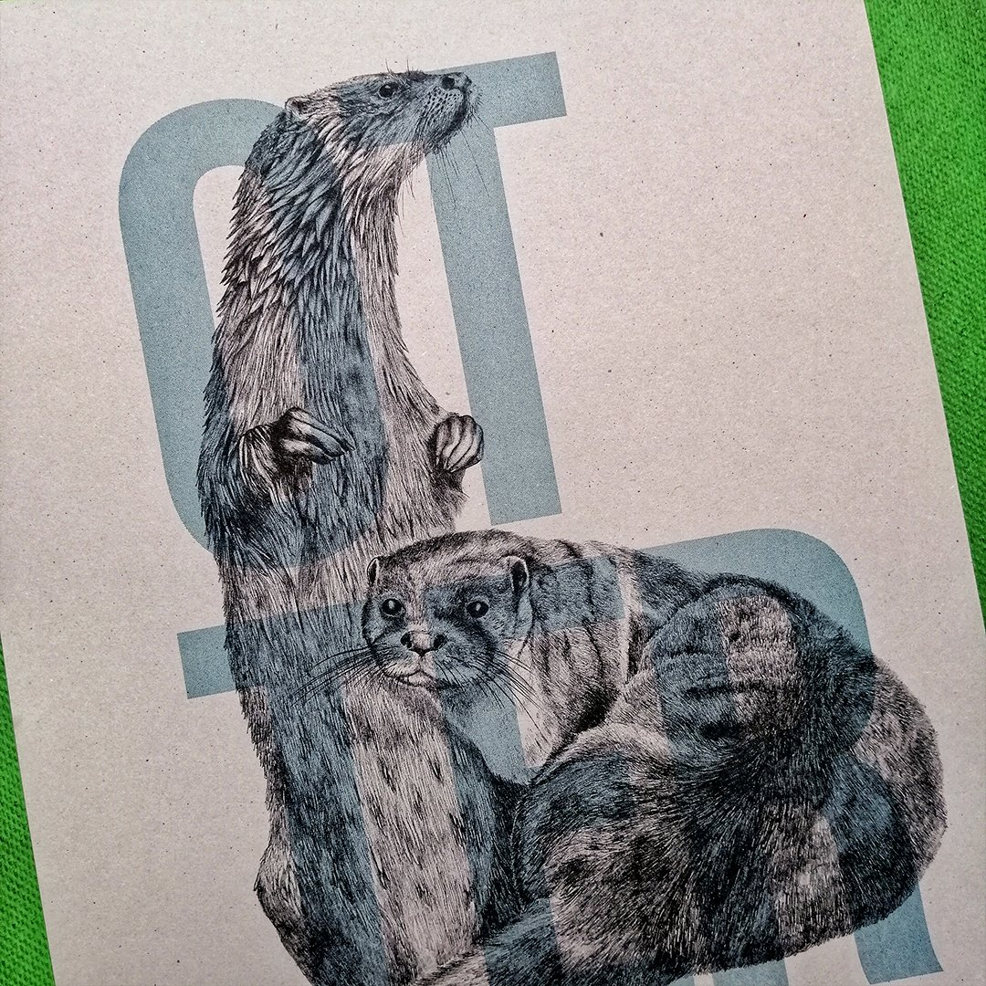Our Pop Up at @customhsleith Post Office is OPEN! Find us through the blue door just beside Leith Market. We're here from 10am to 4pm. If you're on Commercial Street, look out for this otter print by @colquhoundraws