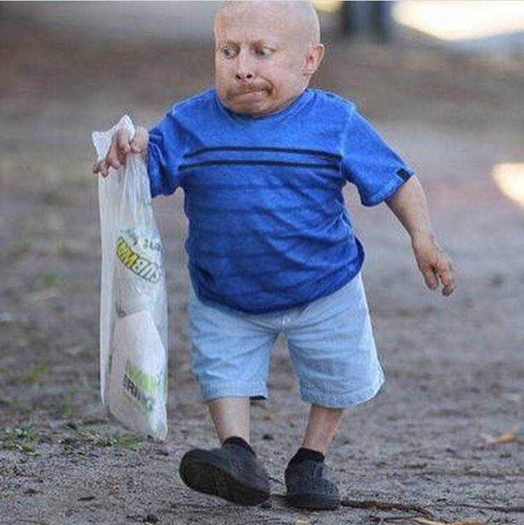 Remember that time Verne Troyer ate a subway the same size as him <br>http://pic.twitter.com/5QsQRorGX4