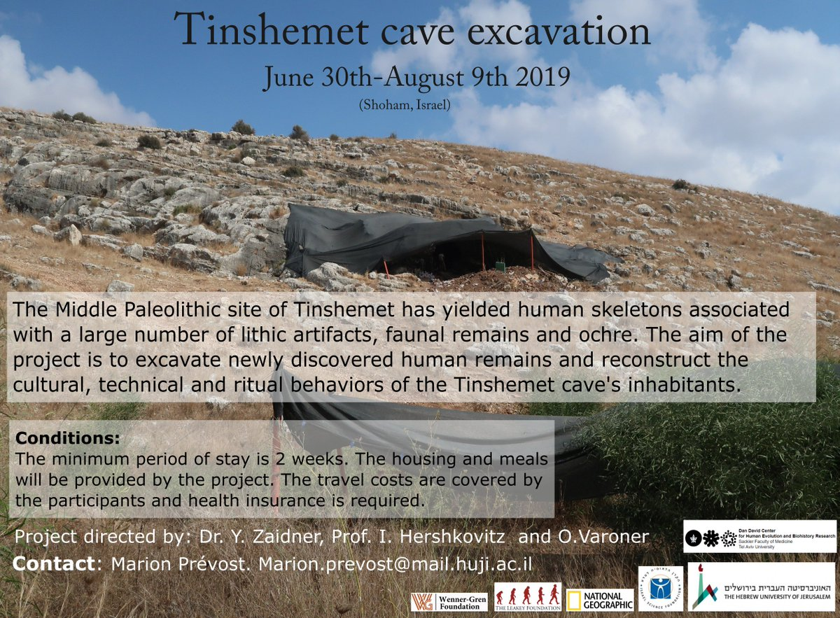 We are looking for volunteers to excavate the Middle Paleolithic site of Tinshemet this summer 💀⛏️💀🔎 #Middlepaleolithic #Flint