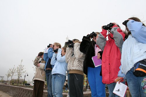 Join us 8-11 this morning for the Great Backyard Bird Count at the @abqbiopark Botanic Garden. Volunteer with other citizen scientists around the country for this annual snapshot of migratory birds. Details at https://www.cabq.gov/culturalservices/biopark/events/great-backyard-bird-count-botanic-garden… #OneABQ