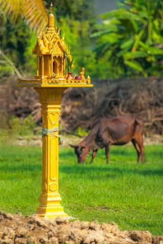 #Wanderlust>> #Thailand's #SpiritHouses [Newsweek] Spirit houses line the walks to most homes in Thailand, protecting and watching over the inhabitants https://www.newsweek.com/hauntingly-beautiful-spirit-houses-thailand-1330678…