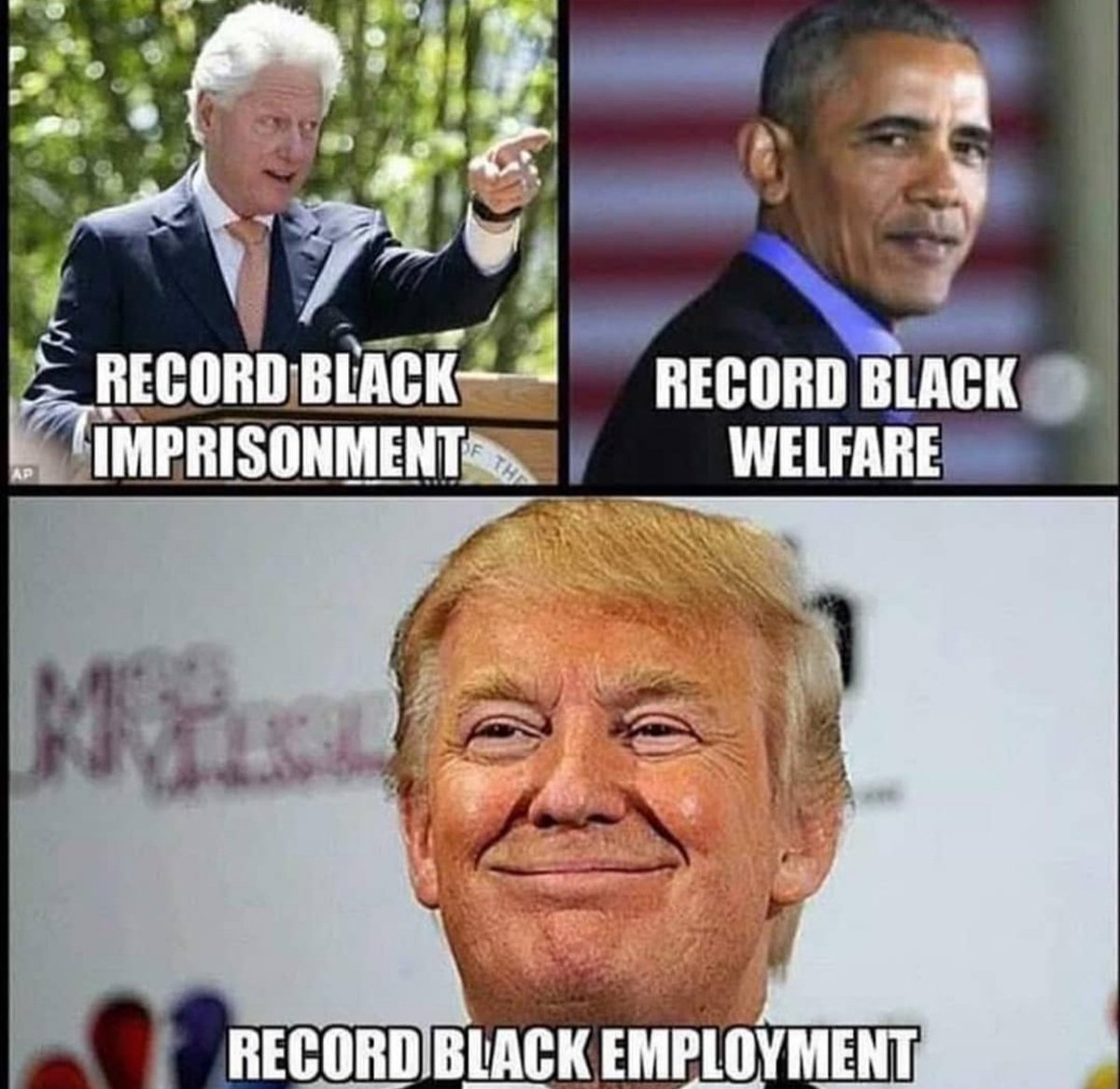 If liberals had half a brain they would vote for Trump based on this alone!