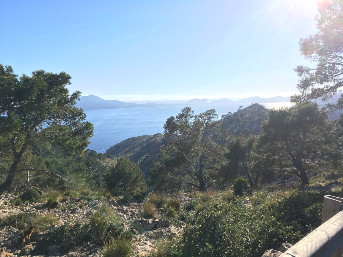 What a place #Mallorca is! Have had a great first day and feels good to be back on the summer bike  #BackYourself<br>http://pic.twitter.com/pWkLdBzZTN