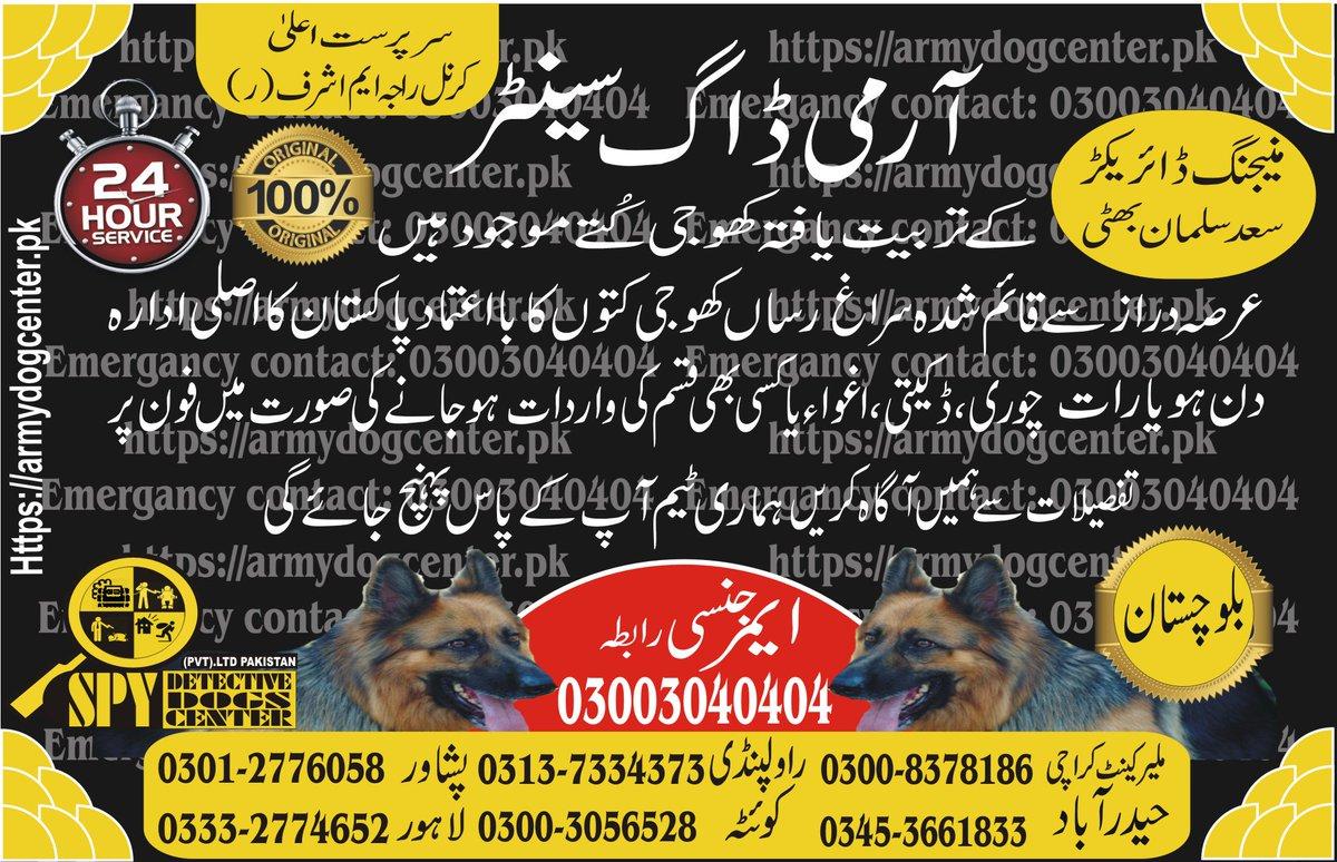 #SurakhRasanKutta #armydogcenter #dogcenter #dogcentersindh #spydogs #spydogcenter #KhotjiKutta https://armydogcenter.pk/army-dog-center-balochistan-khoji-kutta/…pic.twitter.com/Wzro8UjZAW