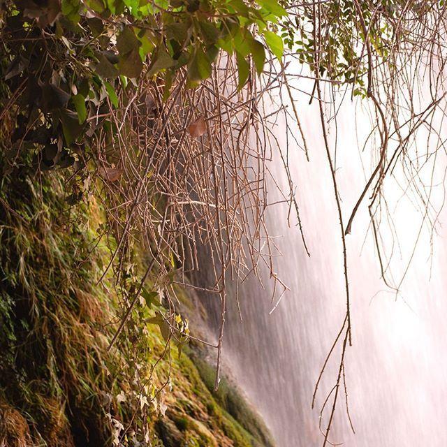 Bajo la cascada. Under the waterfall  #landscape #landscapephotography — view on Instagram https://scontent.cdninstagram.com/vp/019bd62cfc9f428648c87575d0707161/5CFAB11F/t51.2885-15/sh0.08/e35/s640x640/52153128_377747073024886_379864702531796559_n.jpg?_nc_ht=scontent.cdninstagram.com…