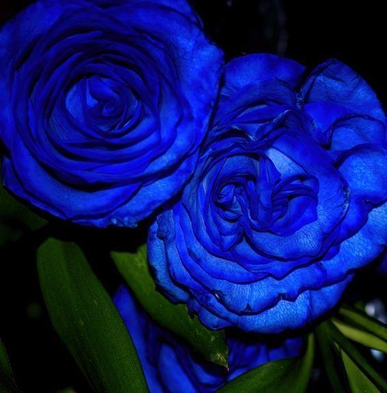 A Blue Sunday #Poetry #Photography  #FaithHill #MusicVideo #DianaMarySharpton https://t.co/xpimUCWHtg