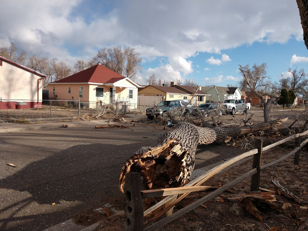 Residents in Pueblo say a brief gust of what they felt was hurricane strength wind blasted down Poplar Street this afternoon around 3:45 and broke off this huge tree branch. No injuries were reported but a vehicle did sustain minor damage. 📸: Leslie Nordman