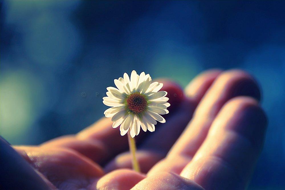 обычные стихи в ожидании чуда делай добрые дела статус своей
