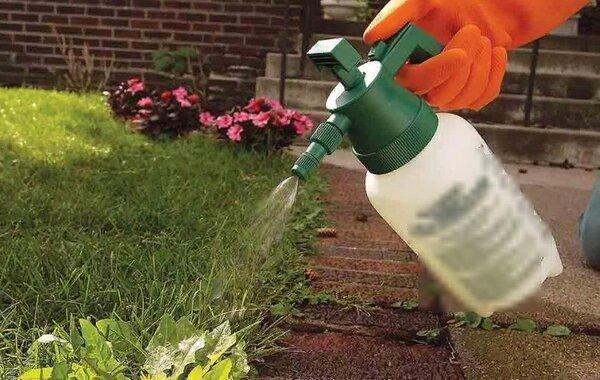 Garden Pest мощнейшее против сорняков в Таразе