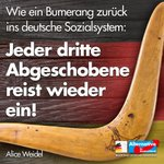 Image for the Tweet beginning: +++ Untragbarer Zustand: Jeder 3.