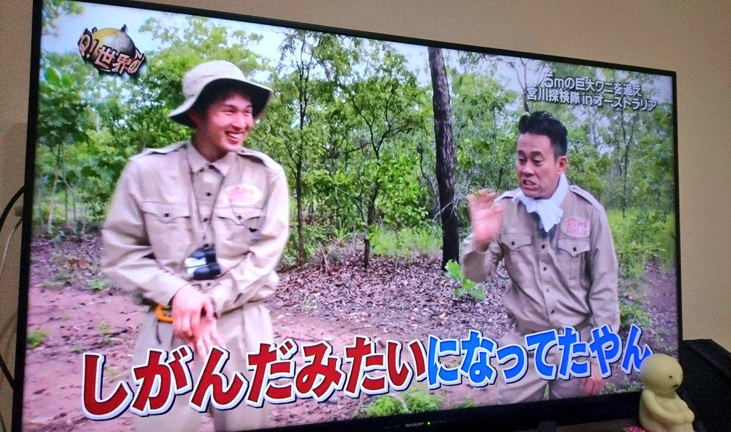 ふぇると【北の打ち師達】's photo on イッテQ