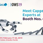 Image for the Tweet beginning: Join @CapgeminiBusSvc at #IAOPOWS19 to