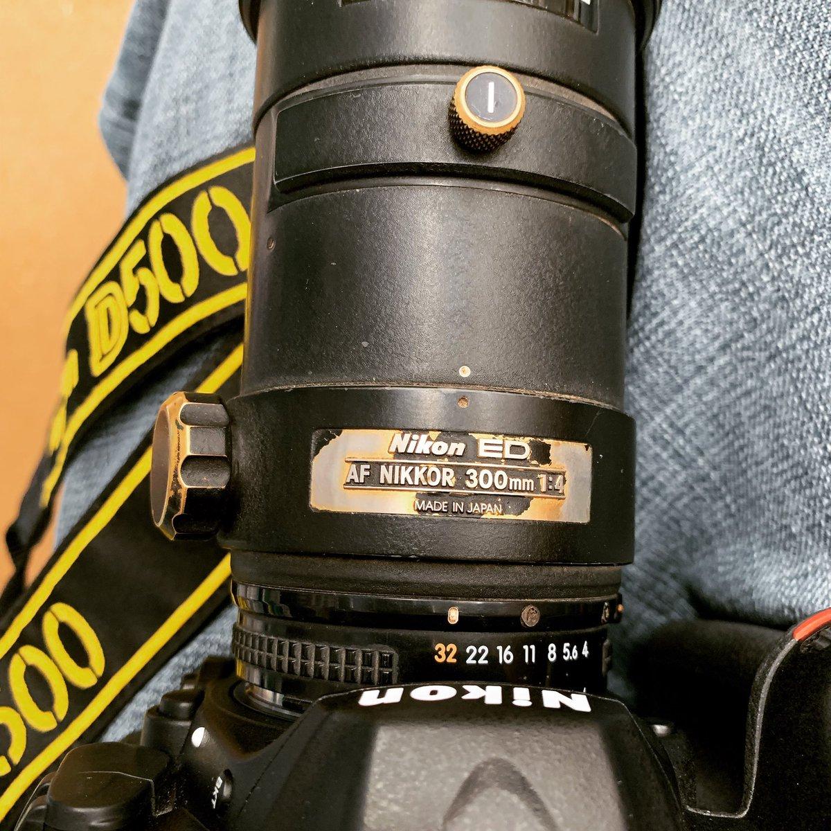 Vamos a probar el AF NIKKOR 300mm f/4 a ver qué tal   #nikon #nikonmx #300mmf4 @NikonistasMx https://t.co/fyP4QS0Bmt