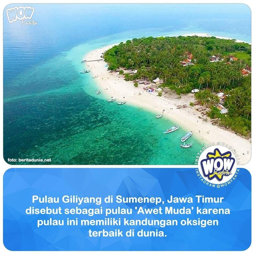 Pulau Giliyang yang terletak di Provonsi Jawa Timur ini dikenal mampu membuat awet muda karena kadar oksigennya yang mencapai 21 persen. Kondisi ini unik karena merupakan satu-satunya daerah dengan.... . . https://www.instagram.com/p/Bt2VFXJAnXy/ . @WOWFAKTA #wowfakta #wowfaktaviral #viral