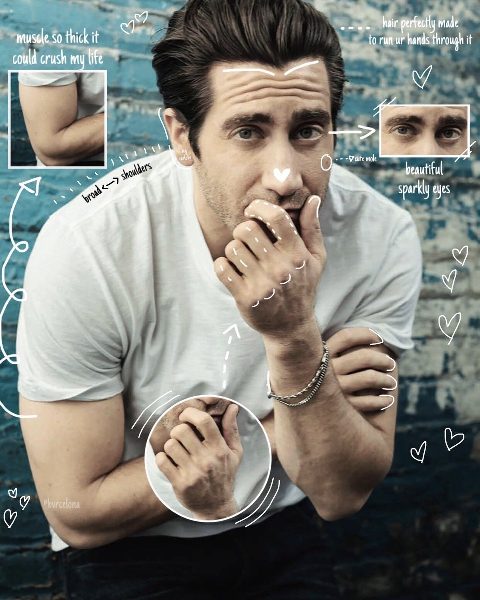 the anatomy of jake gyllenhaal