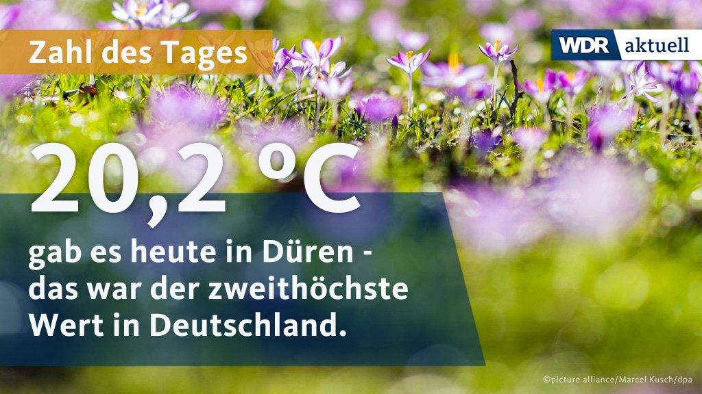 Am Nordrand der Eifel gab es heute knapp über 20 Grad – dank des Eifelföhns, wie unser Meteorologe uns erklärt hat. Wärmer war es nur am Kaiserstuhl in Süddeutschland.