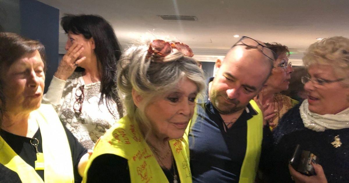 """Brigitte Bardot aux 'gilets jaunes' : """" Ne lâchez rien... Je vous soutiens"""" https://t.co/I8t5GxuwQr"""