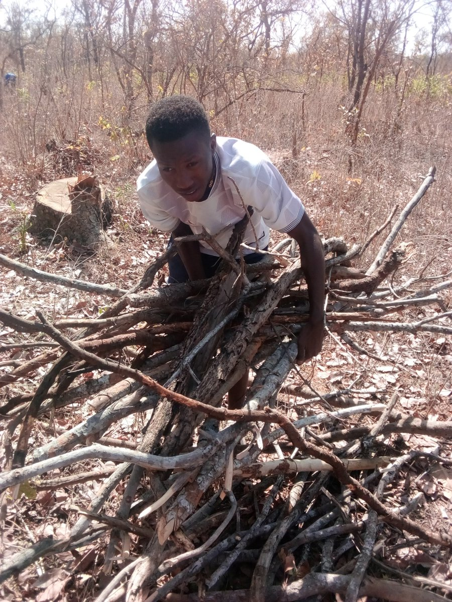 That's what I do for my living. To go out there and get as much firewood as I can and sell them. I love God.