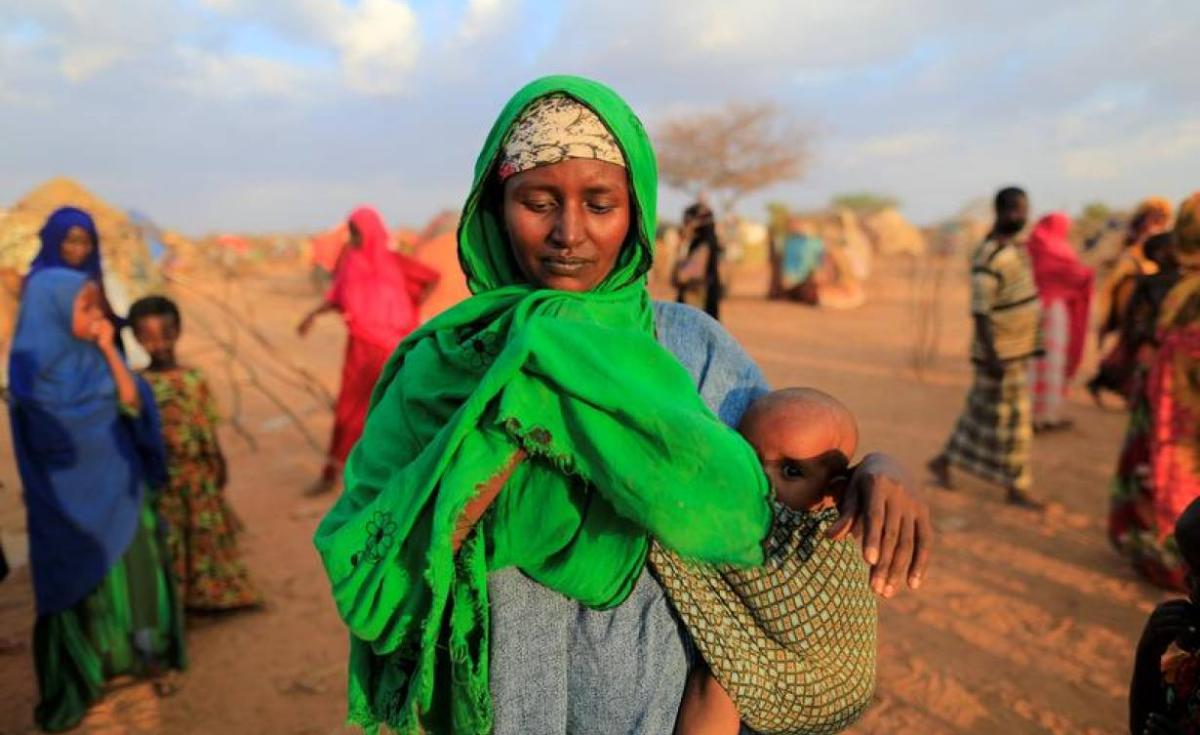 Millions Without Food As Hunger Rises in Africa: https://allafrica.com/stories/201902150050.html?utm_campaign=allafrica%3Aeditor&utm_medium=social&utm_source=twitter&utm_content=promote%3Aaans%3Aabkgta … #Africa