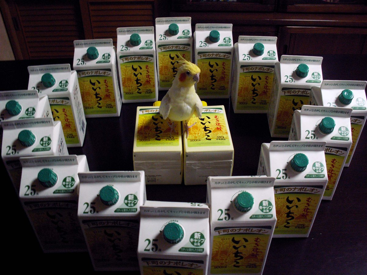 いいちこインコの飼い主@花沢りん吉's photo on #他人に理解されにくい自分の好きなもの