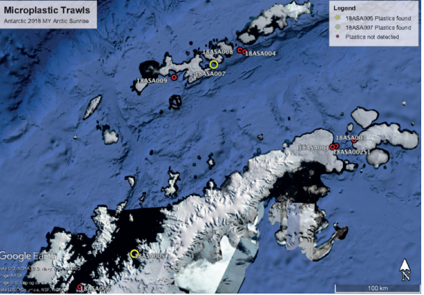 Plastic waste has reached the most remote parts of Antarctica https://wef.ch/2sRHnTk #environment