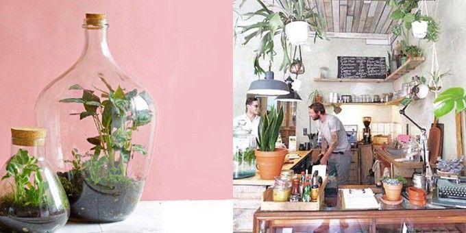 Meer groen in het interieur - hoe pak je dat aan? De ééndaagse training van NIA Academie geeft je een kickstart! https://buff.ly/2HYoEQB #groen #interieur #styling #wonen