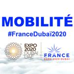 🇫🇷 Le Pavillon France à l'Exposition Universelle de Dubaï portera sur le thème de la #MOBILITÉ, une occasion de mettre en lumière les innovations françaises ✨   #FranceDubaï2020 #Expo2020
