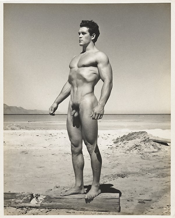 If the ufc had been around during arnold schwarzenegger's prime how would he have done
