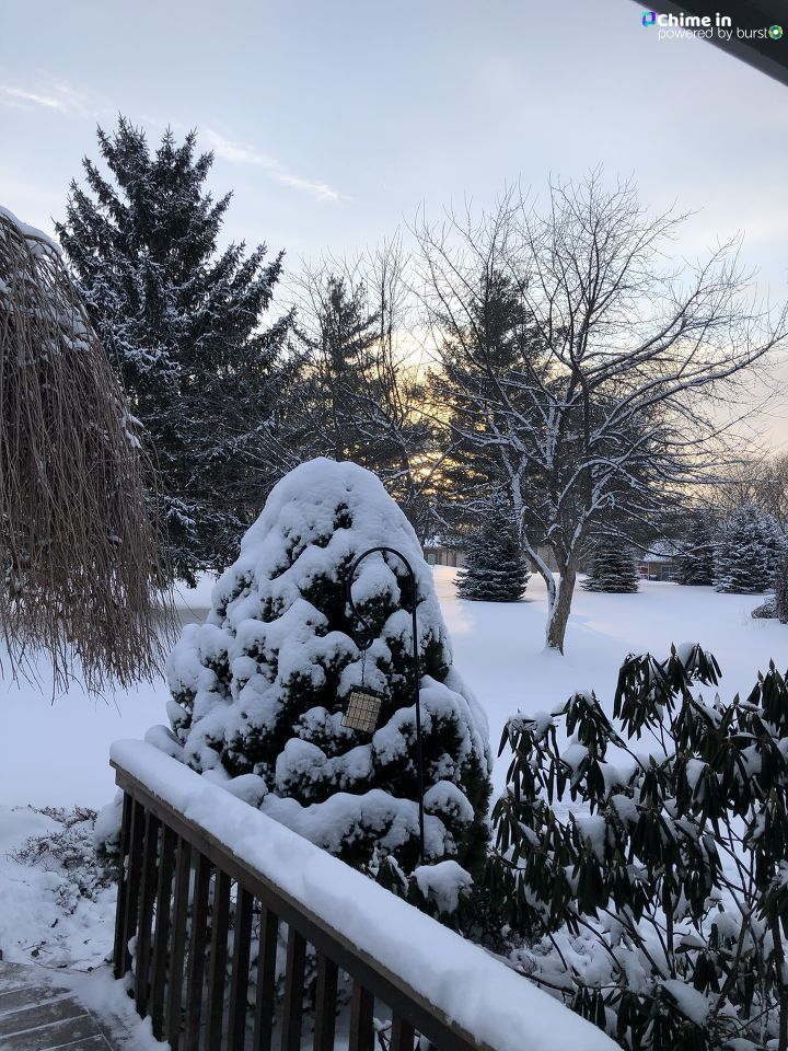A beautifully snowy scene in from Earl Johnson in Grand Blanc.  What does it look like outside your window this morning?   Send your photos and videos here:  https://t.co/fATn86h9n4