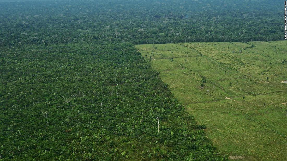 Global climate targets will be missed as deforestation rises, study says https://cnn.it/2SGuXgM