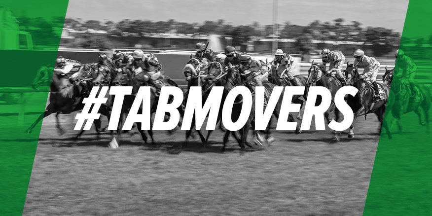 We're 30 minutes from the first at @WyongRaceClub and there has been a massive move for unraced 2-year-old colt Reelwave. He has nice trial form and is currently $5 after starting the day at the $9 mark.