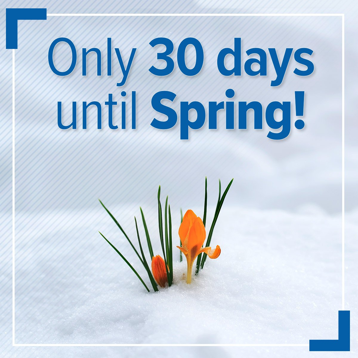 We are 30 days away from the start of spring! But we aren't quite out of winter yet, as Spokane will see up to 4 inches of new snow by Wednesday.  Click below for the forecast, and comment with what you are most looking forward to doing come springtime!   https://t.co/oVWtDW7AJS