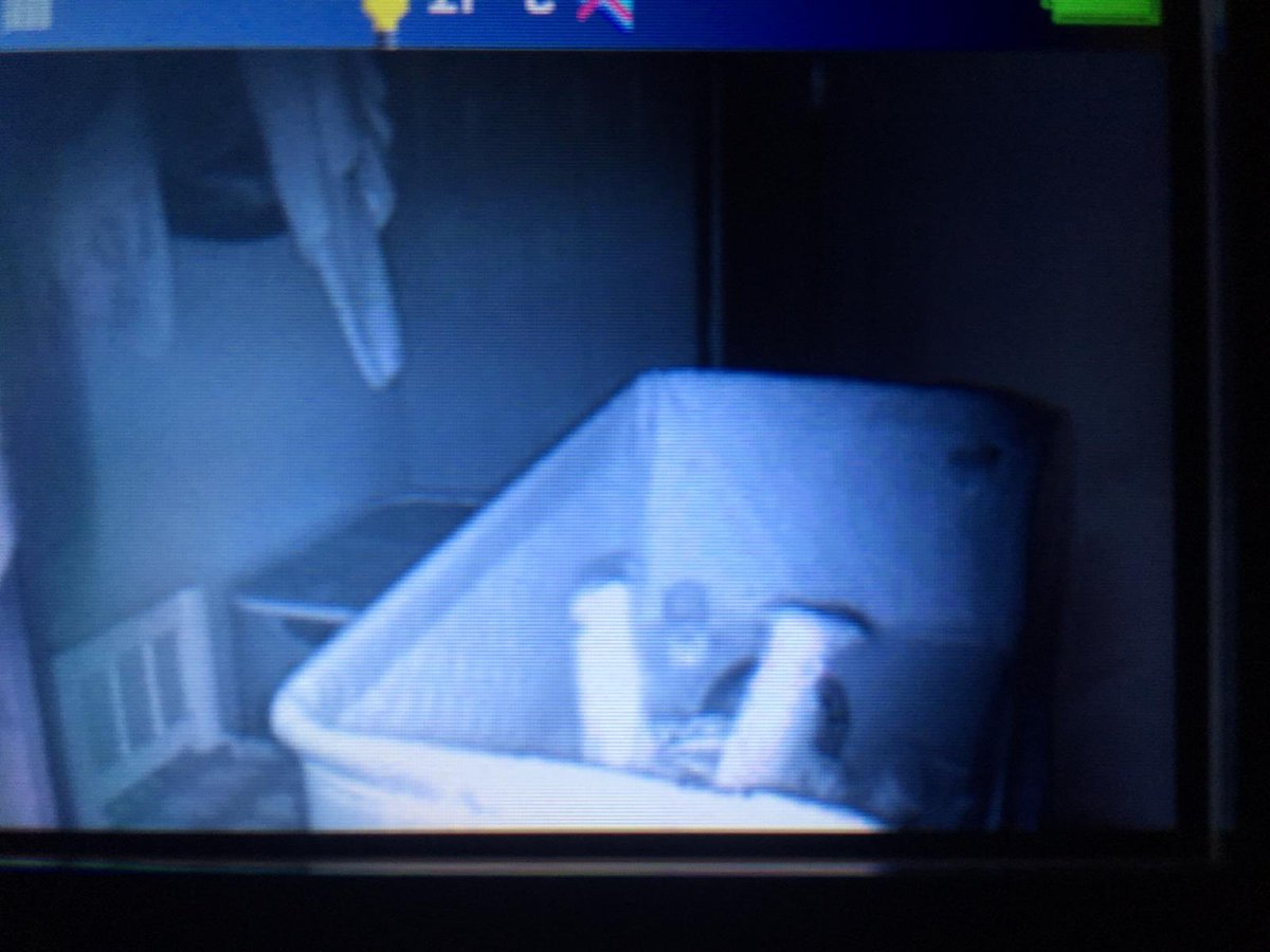 My sister just sent me this photo from her baby monitor. This is how he sleeps now 😂😂😂