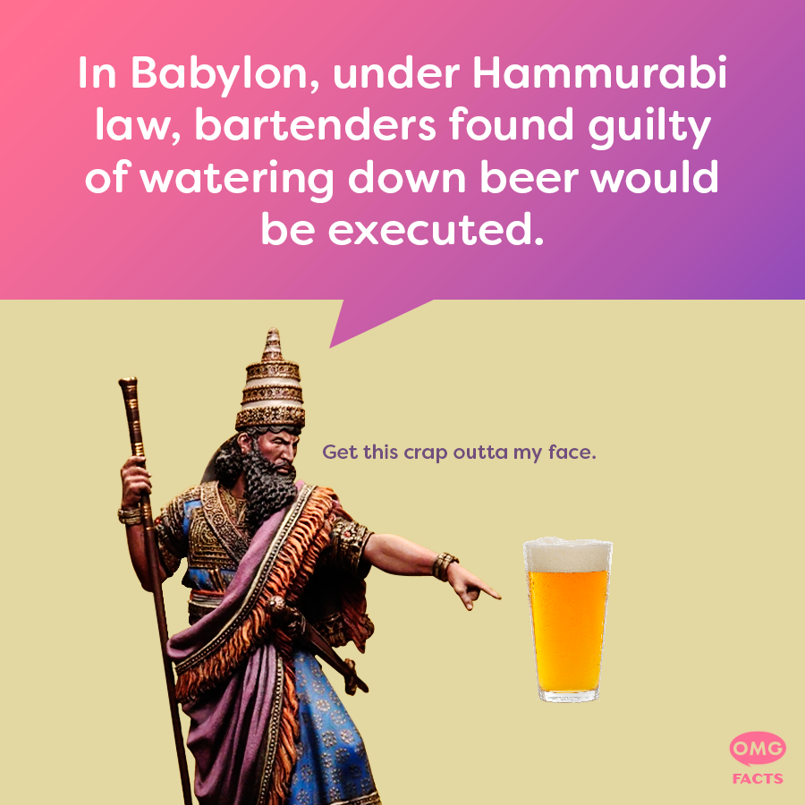 Hammurabi's Code was one of the first recorded documents of written law. 🍺